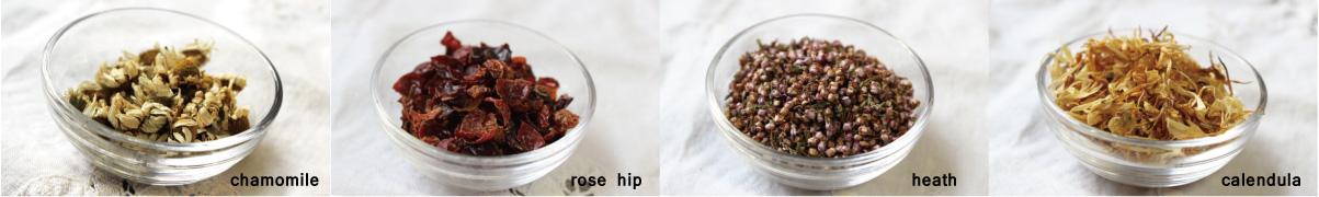herb_top